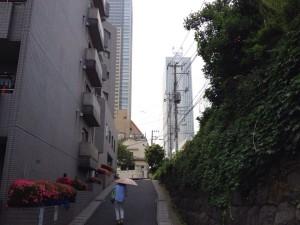 隙間から高層ビルが。